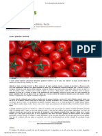 Como Plantar Tomate _ Hortas