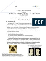 041 - Anatomía y Embriología de La Nariz y Senos Paranasales