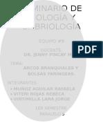 Arcos Branquiales y Bolsas Faringeas.docx