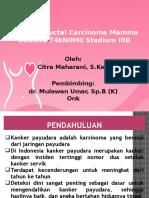 PPT Case Citra
