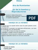Manejo de reproductores .pptx