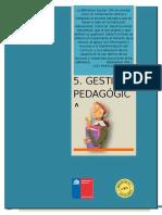 5 Gestion Pedagogica A