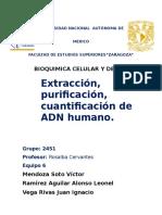 BCT1_ADNTerminado