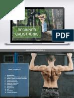 Beginner Calisthenic PDF