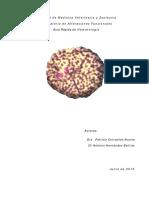 Guía Rápida de Hematología 2016 universidad veracruzana