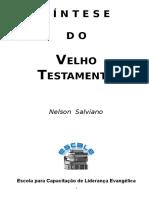 Introdução e Síntese Do VT