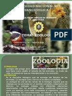 Zoologia b