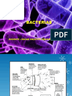 Deiapositiva de Bacteriuas