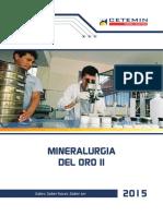 Mineralurgia Del Oro II