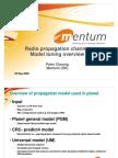 Radio Channel Model Tuning