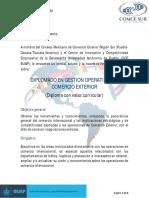 Diplomado Gestión Operativa