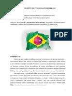 A Bandeira Brasileira Sem Brasil