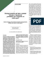etiologia genetica del labioy paladar fisurado e hipodoncia