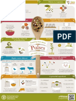 Infographics - 2016 International Year of Pulses