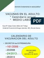 Vacunas_adulto_y_laboral.pdf