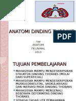 Anatomi Dinding Thoraks