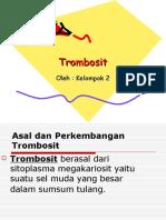 power point Trombosit.ppt