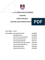 Succinic Acid Production Plant