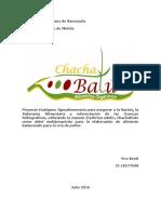 Proyecto Final Alimento Balanceado- Yria Verdi