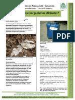 microorganismo esficientes.pdf