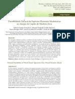 Durabilidade Natural de Espécies Florestais Madeireiras Ao Ataque de Cupins de Madeira Seca