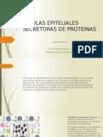 Celulas Epiteliales Secretoras de Proteinas
