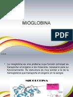Bio Inorganic A