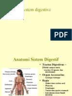 Digestive Kuliah