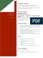 Currículo, Paulo Vidal, USP