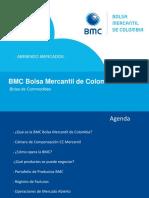 Presentacion Bolsa Mercantil