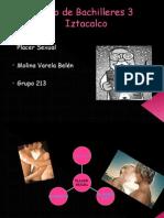 Presentacion Placer Sexual
