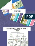 Exposición Shampoo Equipo 4