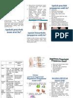 Leaflet-Asam-Urat-Dan-OA andre.doc