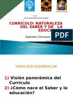 ENFOQUEcurricularPCR_1