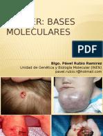 Cancer Bases Moleculares
