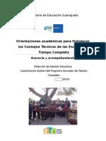 Orientaciones académicas CTE-PETC 2016 (fase intensiva).docx