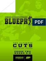 arnoldblueprint_cuts_phase2.pdf