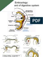 Embriologi.pdf