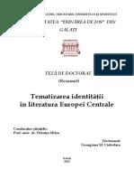 raportul centru margine.pdf