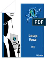 Data Stage Manager