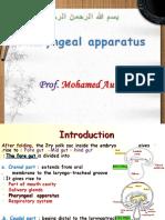 Development of Pharyngeal Apparatus
