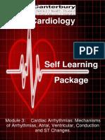 Cardiac Arrhythmias, Mechanisms of Arrhythmias