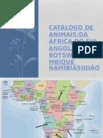 Animais Angola e Moçambique