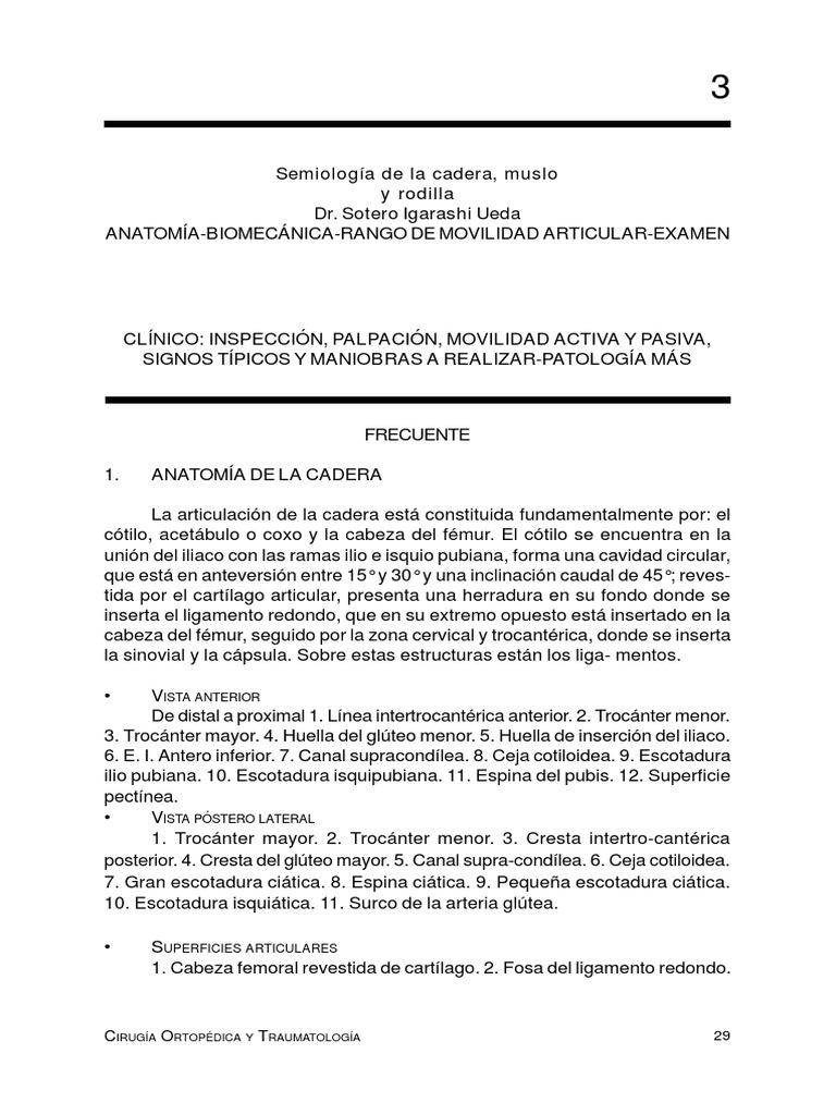 semiologia_cadera.pdf