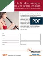 EnergieSchweiz Merkblatt 805.131 Druckluftanlage D