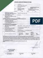 PDF Pagochile
