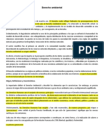 Clase 1 y 2 Introducción Al Derecho Ambiental_Gustavo Rinaldi RESUMIDO Version 2