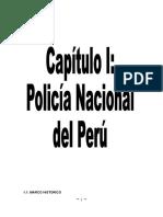 TRABAJO FINAL DE PNP.doc