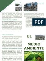 El Medio Ambient1