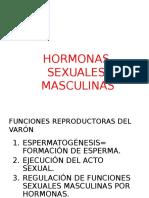 hormonas-sexuales-masculinas.pptx